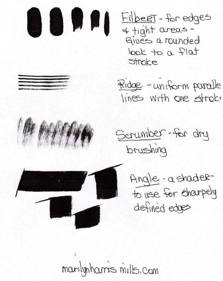 Everything You Wanted To Know About Artist Paint Brushes