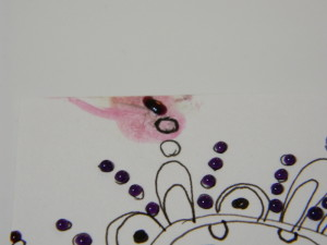 using Pico embellisher in mixed media art and on cards